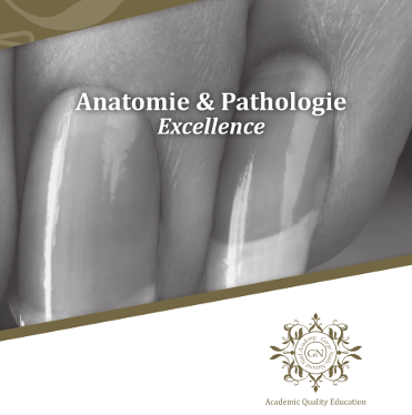 Webinar cursus Anatomie & Pathologie 1 voorjaar 2021