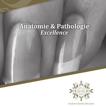 11 sessions Anatomy & Pathology English start May 31st 19:00 GMT